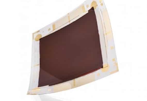 PlasticLogic busca el mercado de la pantalla de Tinta Electrónica