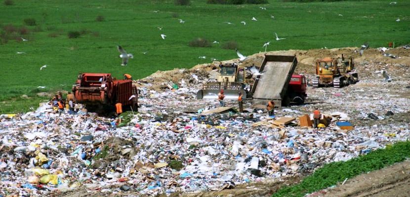 Libro versus eReader ¿Qué contamina más?
